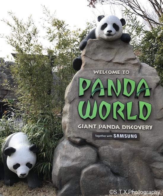 爱宝乐园熊猫世界