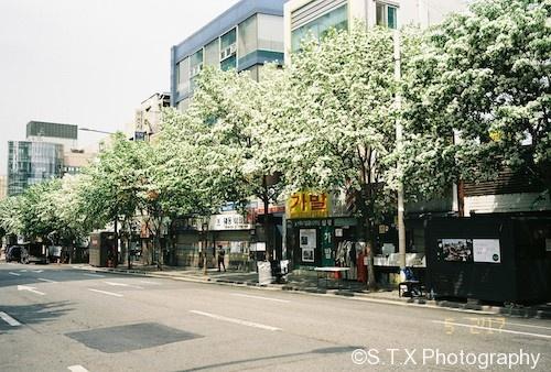 Nikon 35Ti街拍