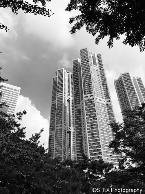 7月首尔的风景 、iPhone 7 Plus