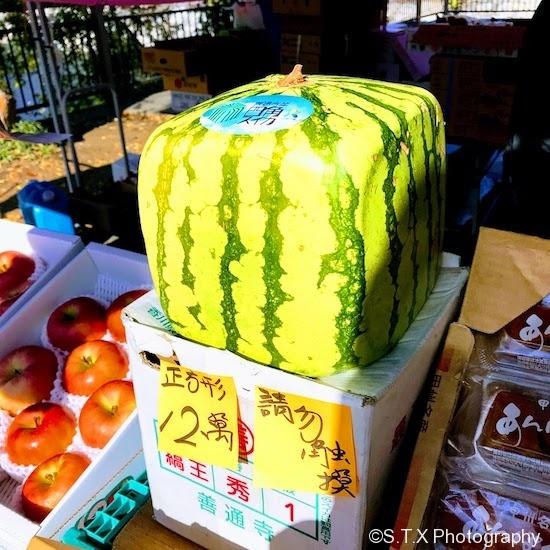 日本方形西瓜