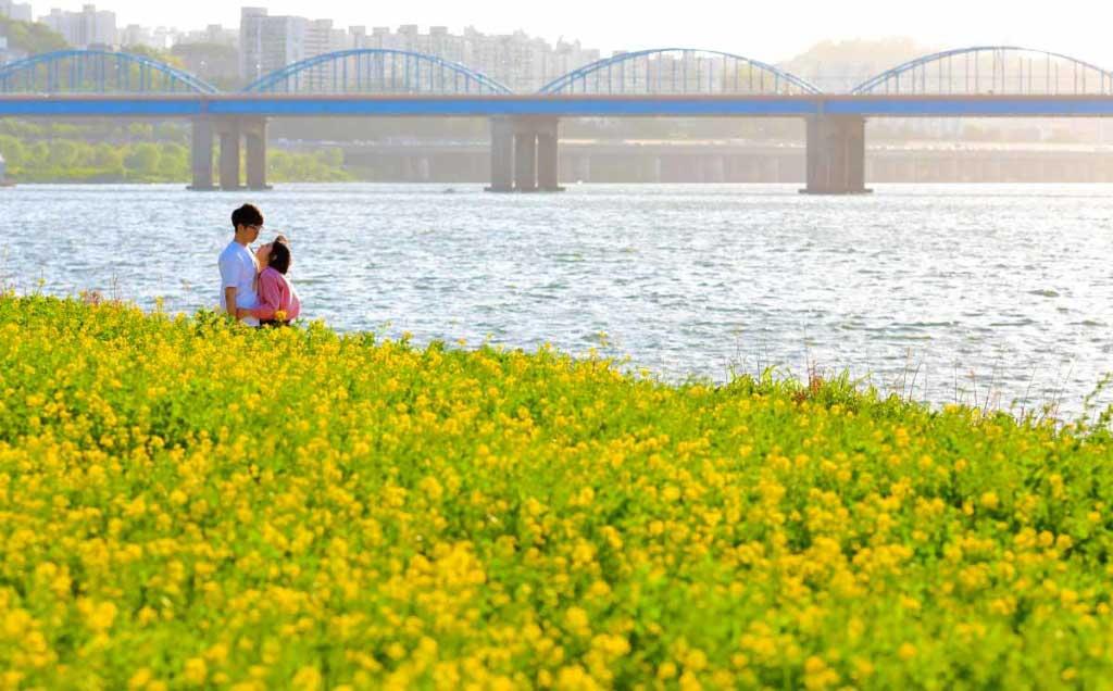 首尔汉江风景,飘在思密达,首尔故事,韩国风光,风光摄影