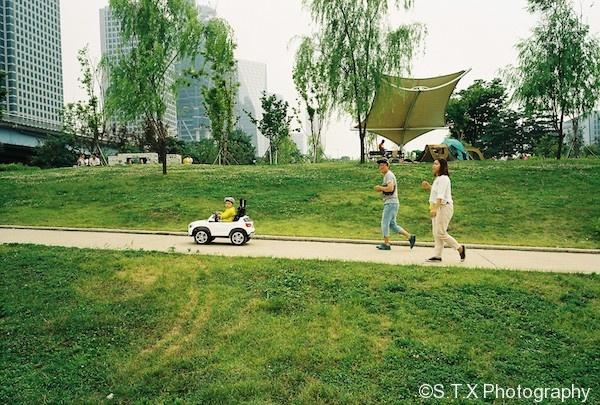 汝矣岛汉江公园